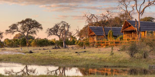 Maun Accommodation