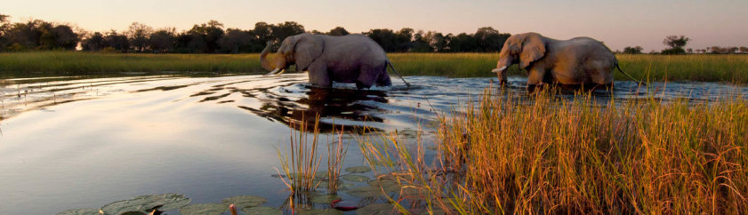 Botswana Budget Family Holiday Accommodation